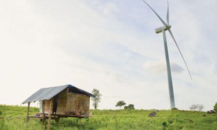 SUSTAINABILITY: Indonesia Pivoting to a Greener Future